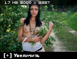 http://i3.imageban.ru/thumbs/2013.11.04/c5c24d4b3a35ecdf28f2cabd930ed304.jpg