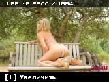http://i3.imageban.ru/thumbs/2013.11.04/f5585c8ea0e7eeb7bc4cc201b3d2d6ec.jpg