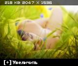 http://i3.imageban.ru/thumbs/2014.01.26/e460804ac21521bfd1994ba271809a92.jpg