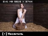 http://i3.imageban.ru/thumbs/2014.02.06/d8bfa961c91b77564e4e4d9d68f1235d.jpg