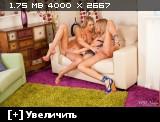 http://i3.imageban.ru/thumbs/2014.02.08/754f83cf9d87ba01dfacc19a0379ea1f.jpg