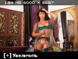 http://i3.imageban.ru/thumbs/2014.02.08/c477abbda3800d66c020bbae345036fb.jpg