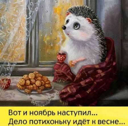 https://i3.imageban.ru/thumbs/2018.11.09/805e07435face7706b68a914e743ae10.jpg