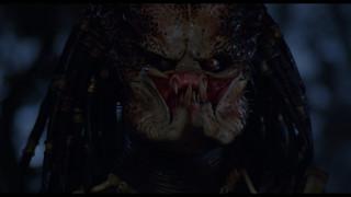 Хищник: Коллекция / Predator: Collection (1987-2018) Blu-Ray Remux 1080p