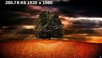 4c86682ac23d04752e216a733894fb3a.webp