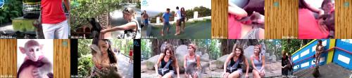 6b589abd08e92de9e4e04b1080f89d23 - Amazing Wild Animal Attacks - Monkey Attacks People Craziest Animal Attack Girls