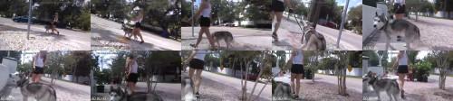 e41dd973044d1fbecda3ffabfa2a142f - Stella Type Butthole, Dog-Girl Anal