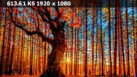 a71577143e60fdd1e8508d0649df5f86.webp