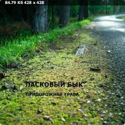 Алексей Блохин и группа Ласковый бык - Коллекция [11 Альбомов] (1987-2004) FLAC